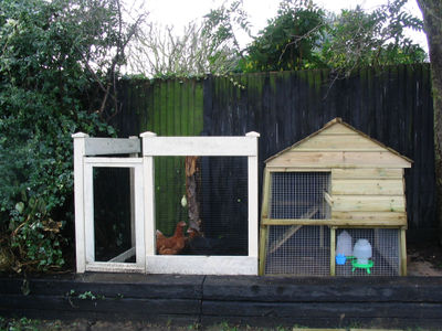 Chickenhouse1