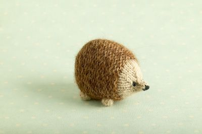 Hedgehog 5