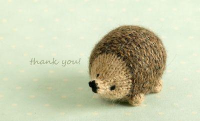 Thankshedgie
