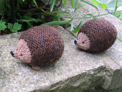 Hedgehogs2