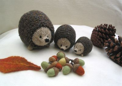 Acorns and hedgehogs