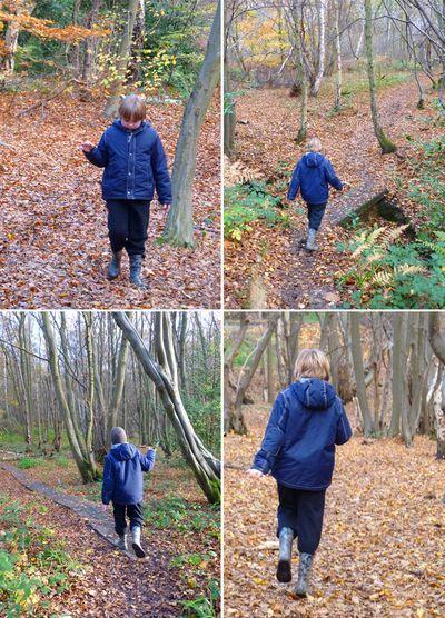 Toby woods