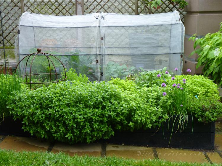 Wetgarden