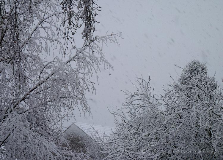 Snowing7