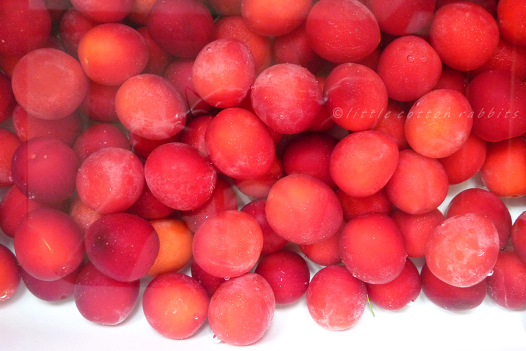 Washingplums