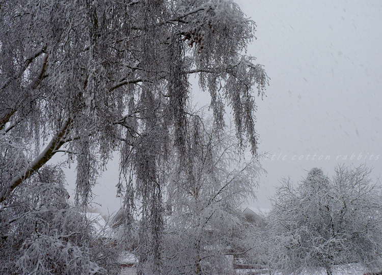Snowyworld
