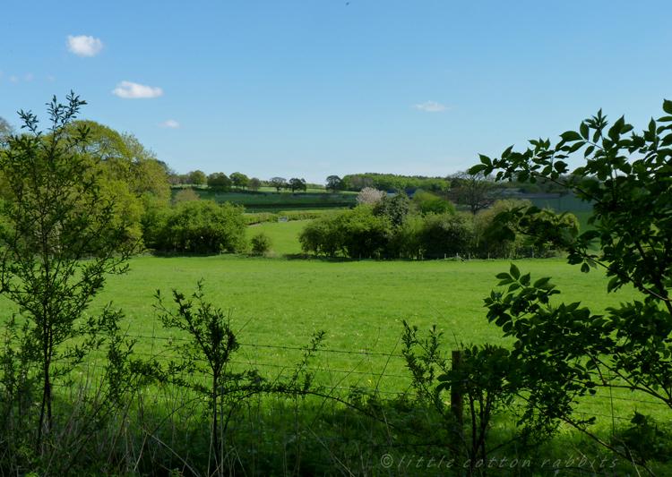 English countryside