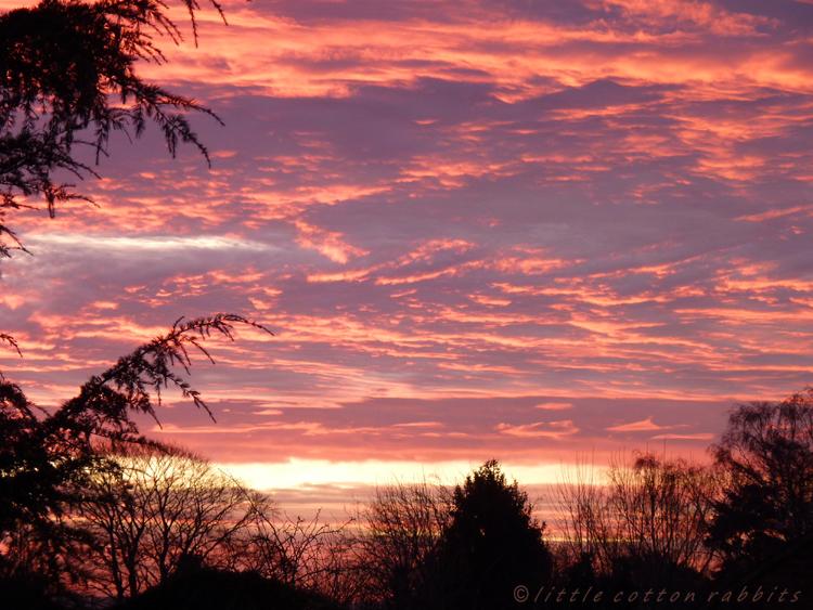 Sunrise jan 20