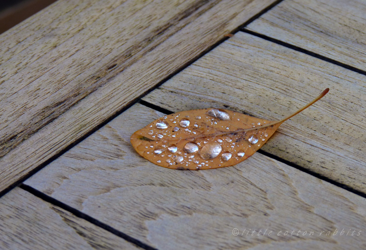 Silvered leaf