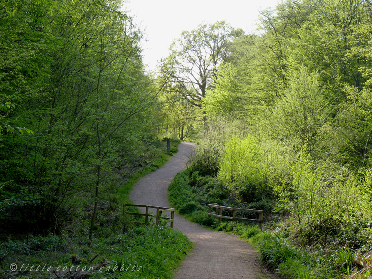 Favourite path