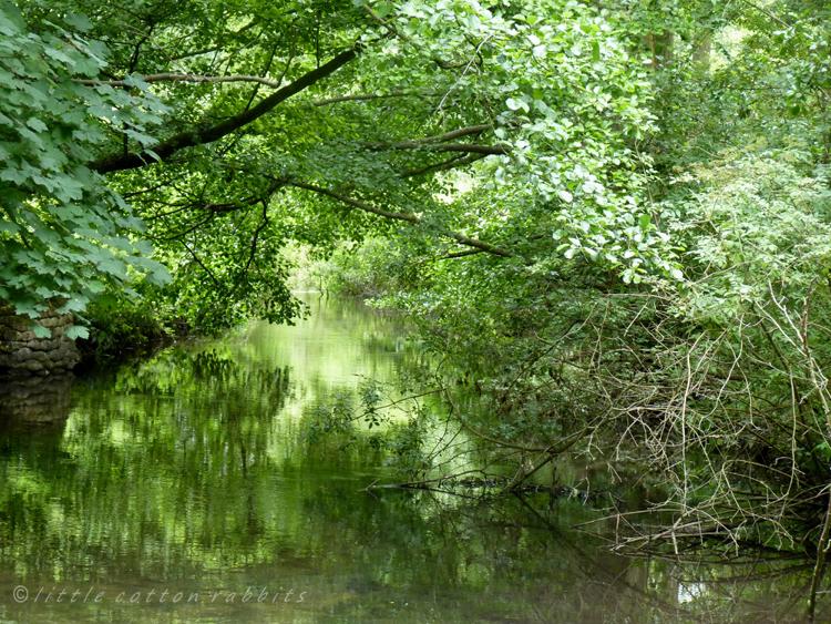 Mimram river