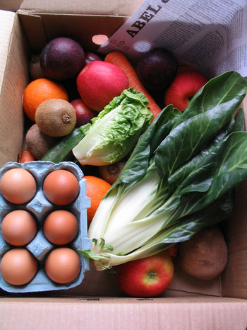 Abelandcolebox