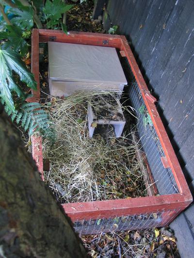 Hedgehoghouse